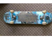 Vaughn baker skateboard gullwing trucks working condition