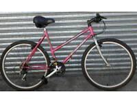 Ladies carrera bike