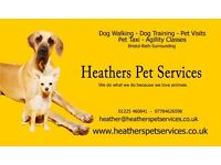 Professional Dog walkers and Pet Sitters in Bath Fully insured, experienced and police checked