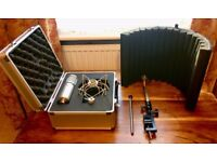 sE Electronics 2200a Condenser Microphone with Vocal Booth, Flight Case and Shockmount