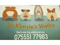 Dog walking service - one to one dog walking service