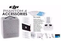 DJI Phantom 4 Original Accessories
