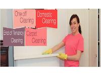 HEAVY DUTY* End of Tenancy Cleaning,Deep*Domestic Cleaning,£9/h,Cleaning Lady,Carpet Cleaning,Iron