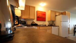 3 Bed Walking to UNB! NO DAMAGE DEPOSIT REQUIRED!