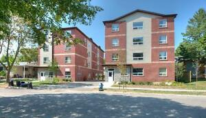 FURNISHED 5 BEDROOM APTS * CARDILL CRES * ONE MONTH FREE Kitchener / Waterloo Kitchener Area image 1