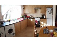 whole kitchen furniture for sale or separate items