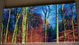 Colourful Woodland Photo printed on canvas 30x60cm