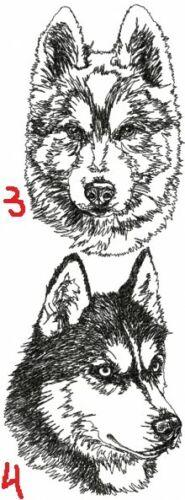 Siberian Husky Personalized Embroidered Fleece Stadium Blanket Gift