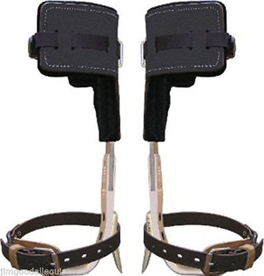 Climb Right Aluminum Tree Climbers Spur Set Wstrapt Padslong Tree Gaffs Usa
