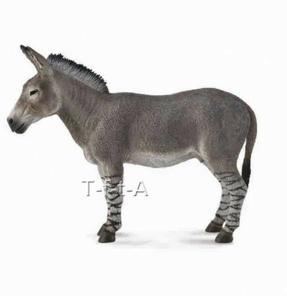 FREE SHIPPING   CollectA 88664 African Wild Ass Donkey 2014 Toy - New in Package