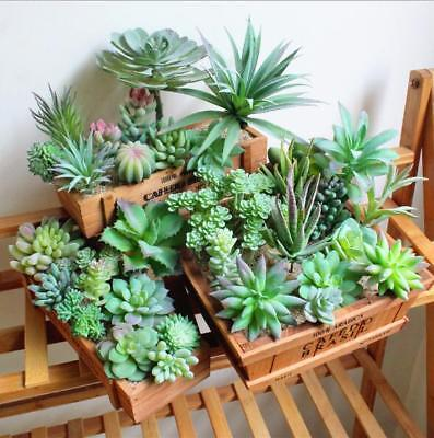 11 Pcs Mini Kinds of Artificial Succulent Plants Home Fake Floral Fast Shipping