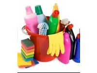 Domestic or commercial cleaning work wanted
