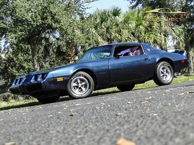 1981 Pontiac Firebird  1981 PontiacFirebirdDark Blue MetallicSurvivor Classic Car Services LLC
