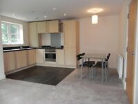 Newly refurbished 2 bed 2 bath Apartment for Sale