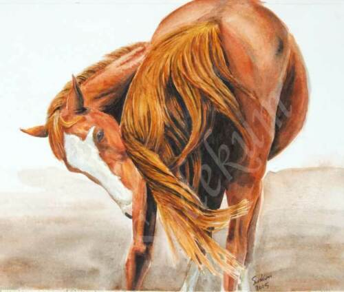Original Watercolor Biting Scratching Tail Swish Horse Painting