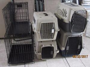 cage et cage de transport pour chien ou chat