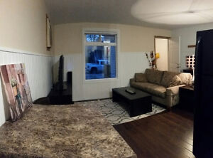 Nicely Rennovated, Centrally Located and Fully Furnished Regina Regina Area image 5