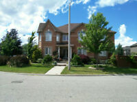 executive home in Brampton for rent