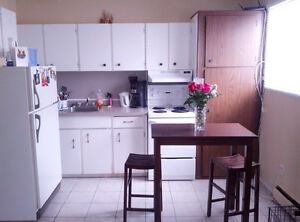 Gorgeous renovated apartment! 10633 152st