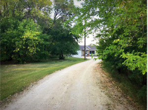 Maturely treed, private acreage near Oakbank on paved Garven RD
