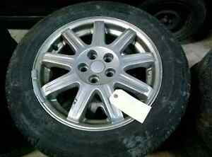 Tire and rims for a pet cruiser