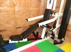 NL Multi-gym with dumbbells and attachments