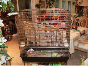 *2* Bird Housing Cages For NEW HOMES**
