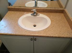 Sink and moen faucet