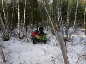 2006 Arctic cat 700