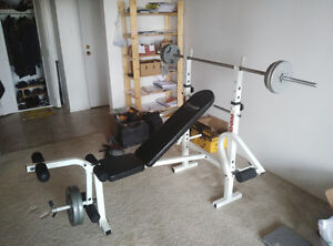 BENCH PRESS (adjustable) with Plate Weights and Olympic Bar