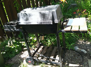 gas BBQ with side burner and long hose