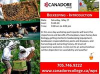 Parry Sound - Canadore College - Beekeeping Introduction