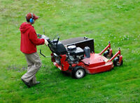 AFFORDABLE LAWN CARE - MAINTENANCE/CARE