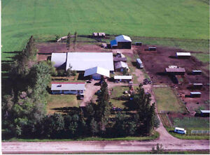 rent or sale, horse setup,house,shop, hay shed,pens,pasture