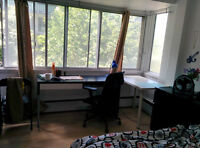 Downtown Mcgill Ghetto 3 1/2 --lease transfer starting September