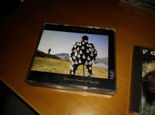 Pink floyd delicate sound of thunder cd doppio...