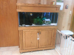 55 gallon aquarium with canopy stand