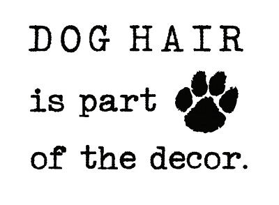 Dog Hair is Part of Decor Vinyl Wall Mirror Decal Room Sticker Pet Lover Quote