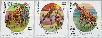 SOMALIA 2000 808-10 Giraffen Giraffe Tiere Animals Fauna Wildlife MNH