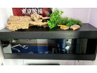 4ft Reptile Vivarium (almost) full set up