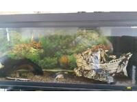 2 fish tanks with ornaments and lots more ( need gone today )