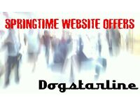 D O G S T A R L I N E - WEB DESIGN - SPRING SPECIAL OFFERS - SEO Starter or Website MOT just £50!