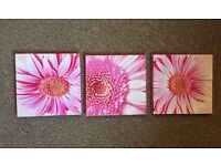 New 3 piece pink flower canvas painting