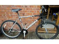 """Gents 22"""" aluminium frame bike."""