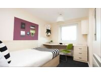 Student Accommodation-Ensuite Room to rent in shared flat
