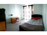 Central Cambridge - double room to let