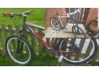 Specialized and GT Mountain bikes
