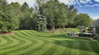 Lawn Maintenance Quick and Quality Guarantee