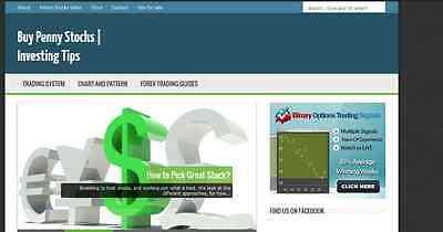 Niche Penny Stocks Blog Website Domain E-commerce Top-penny-stocks.com