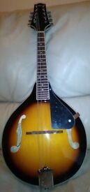 Savannah sunburst mandolin with Kinsmann soft padded case as new £70 ono